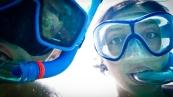 we're after a lionfish :-D